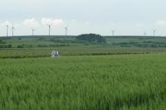 Rollerfahrer durch die Felder bei Mettenheim.