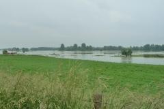 Schwemmland irgendwo vor Xanten.
