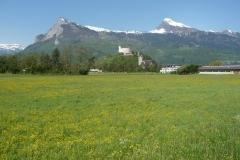 Burg Gutenberg bei Balzers im Fürstentum Liechtenstein.