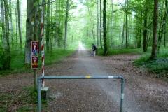 Deutsch-Schweizerische Grenze in einem Wald. Aline steht hinten beim deutschen Schlagbaum.