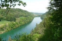 Ganz ruhiger Abschnitt bei Teufen. Kaum zu glauben, dass das derselbe Fluss wie beim Rheinfall ist.